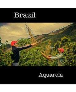 Brazil Aquarela Green Coffee