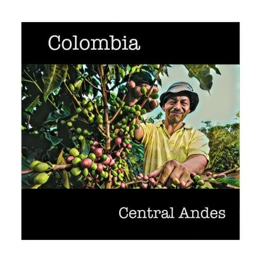 Colombia Central Andes Green Coffee Beans