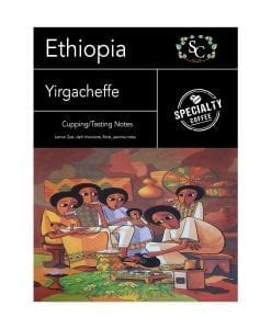Ethiopian Yirgacheffe Single Origin Coffee