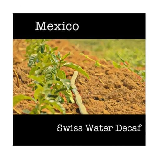 Mexico Swiss Water Decaf Green Coffee Beans