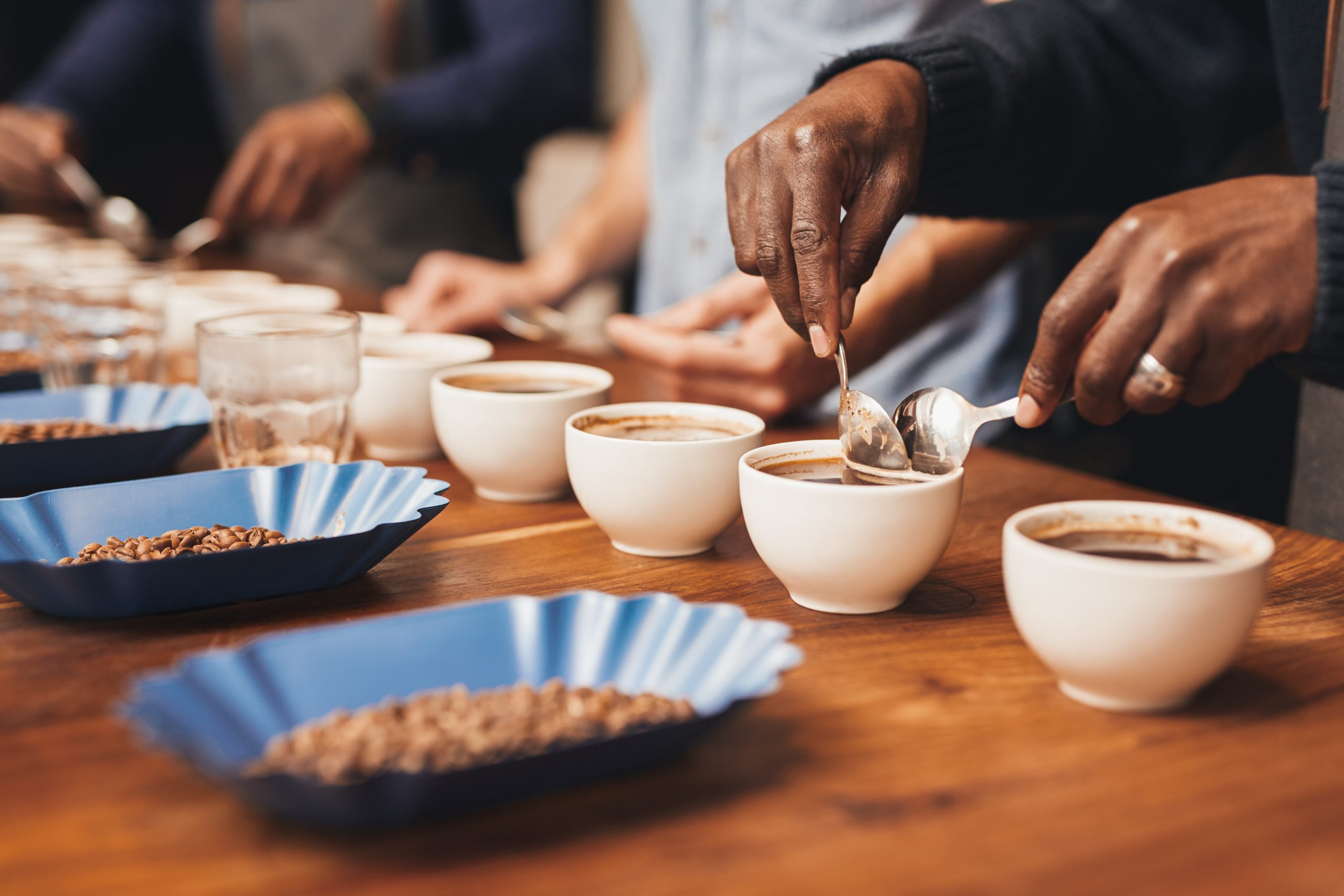 Wholesale Coffee Cupping
